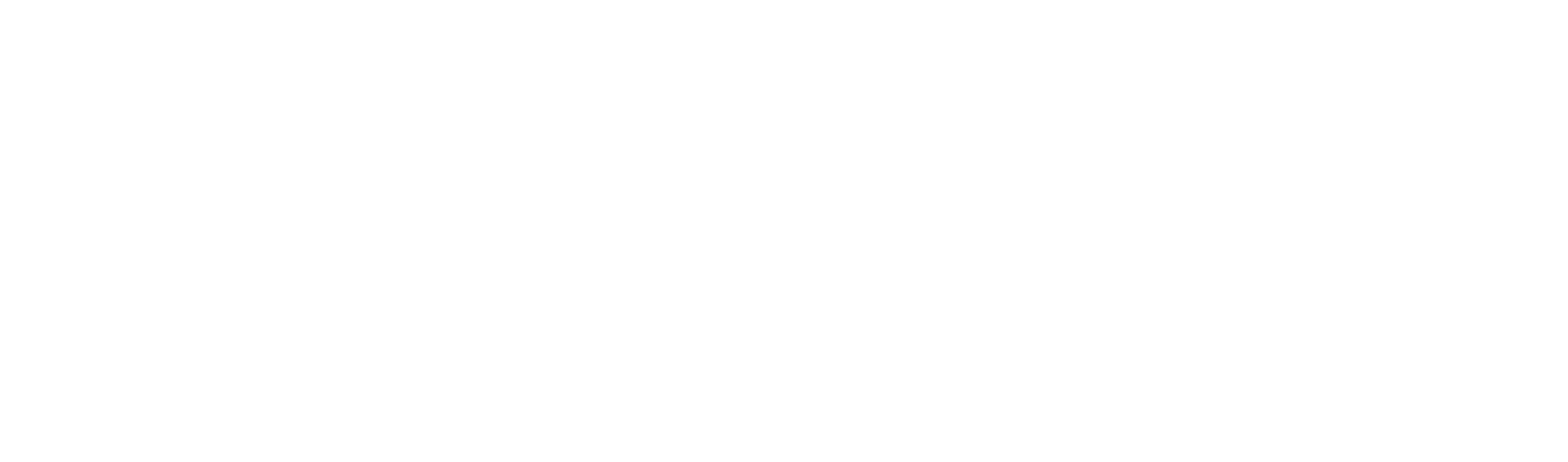 The College of Charleston Computer Science Logo